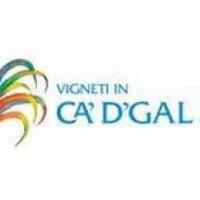 Ca'D'Gal